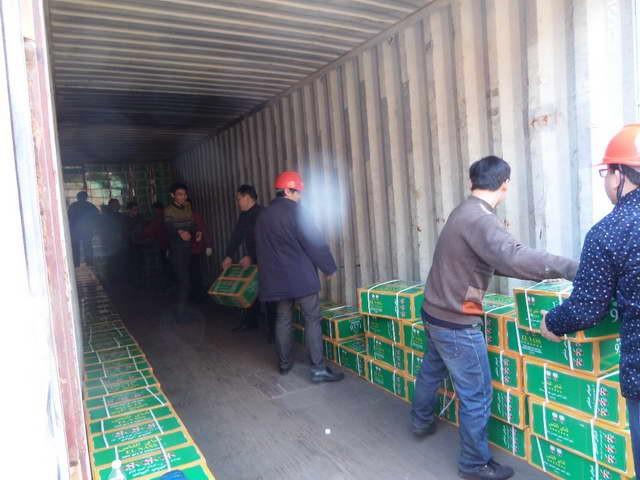 成都到钟山县货运直达专线大件物品运输